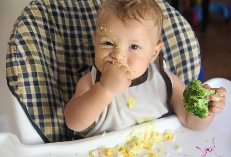 lista de ouă la un copil)